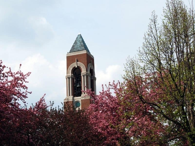 pic of Ball State University