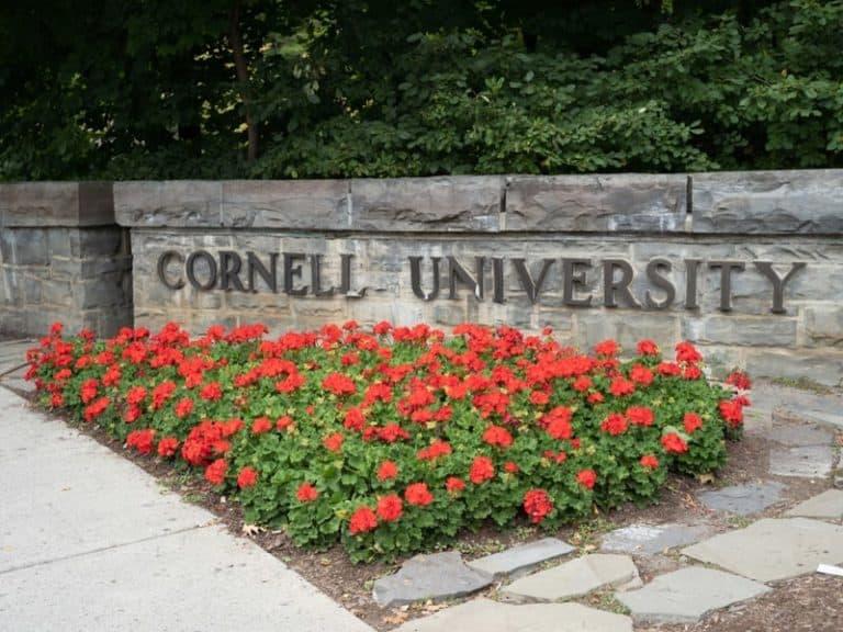 What Makes Cornell Unique?