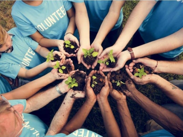 Is Volunteering an Extracurricular Activity?
